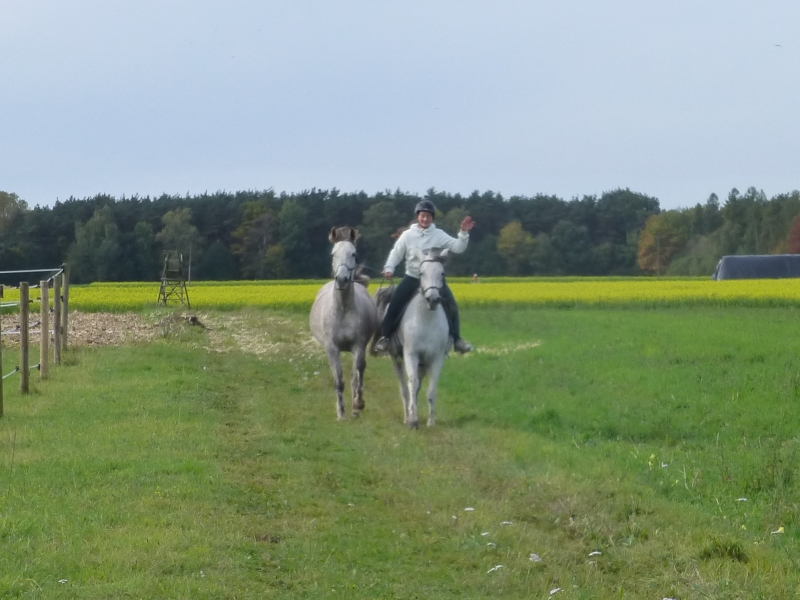 Die siebtplatzierte der Pferdesportler: Vivien